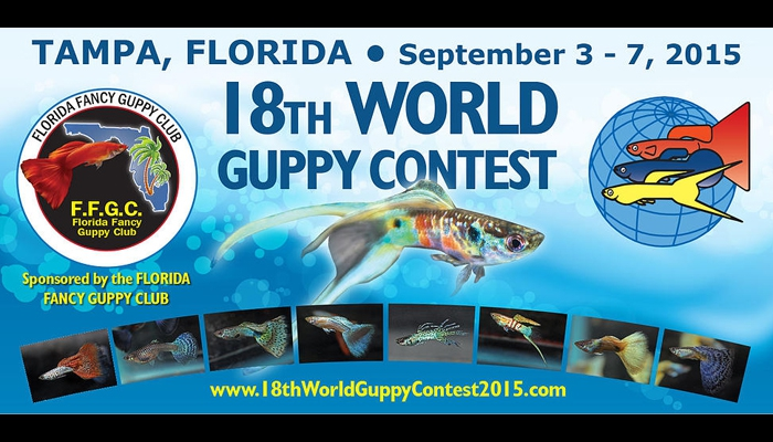 World Guppy Contest 2015